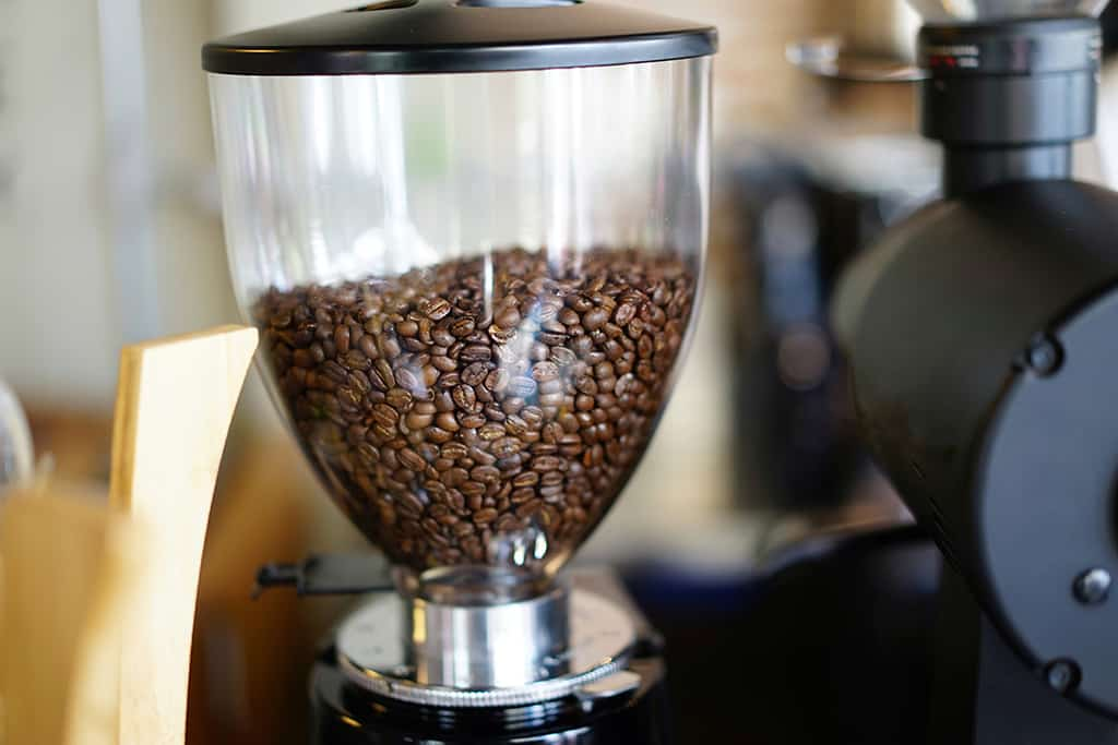 The Importance of a Good Grinder | Little Owl Coffee Roasters Journal