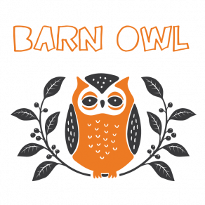 Little-Owl-Barn-Owl