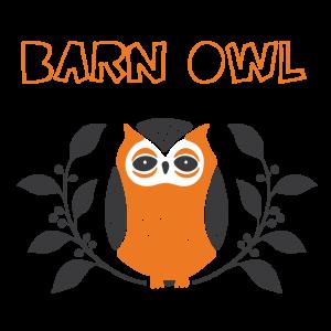 Little-Owl-Barn-Owl