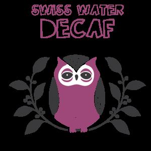 Little-Owl-Decaf