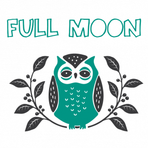 Little-Owl-Full-Moon