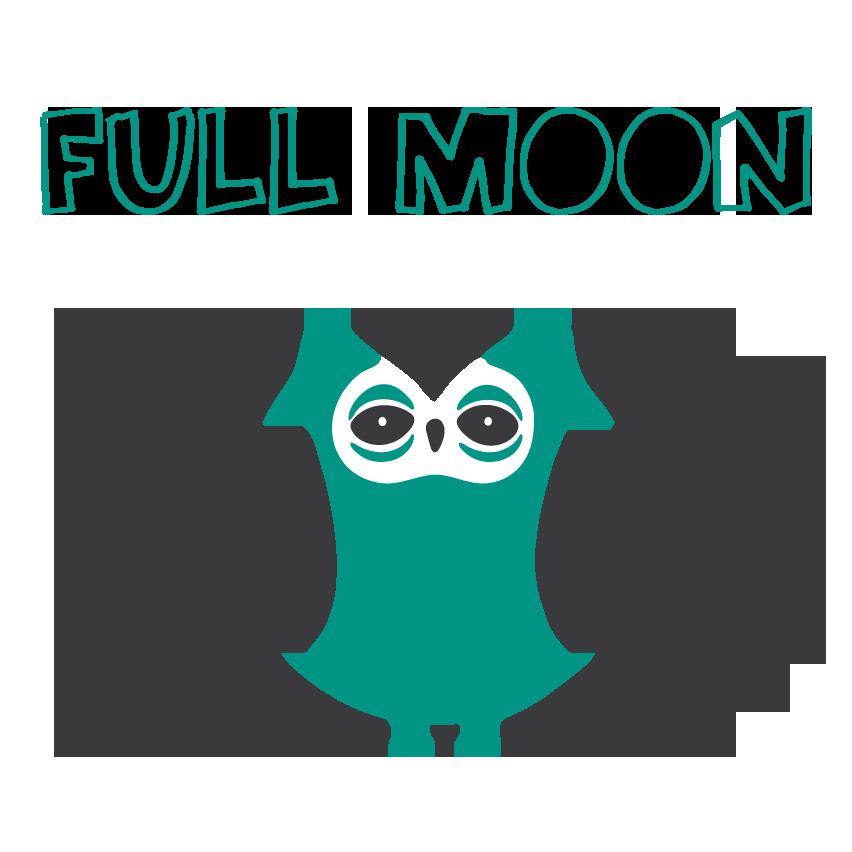 Little-Owl-Full-Moon