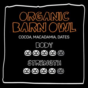 little owl_barn_owl