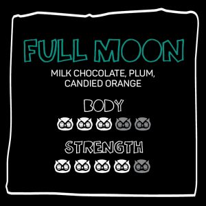 little owl_fulll_moon