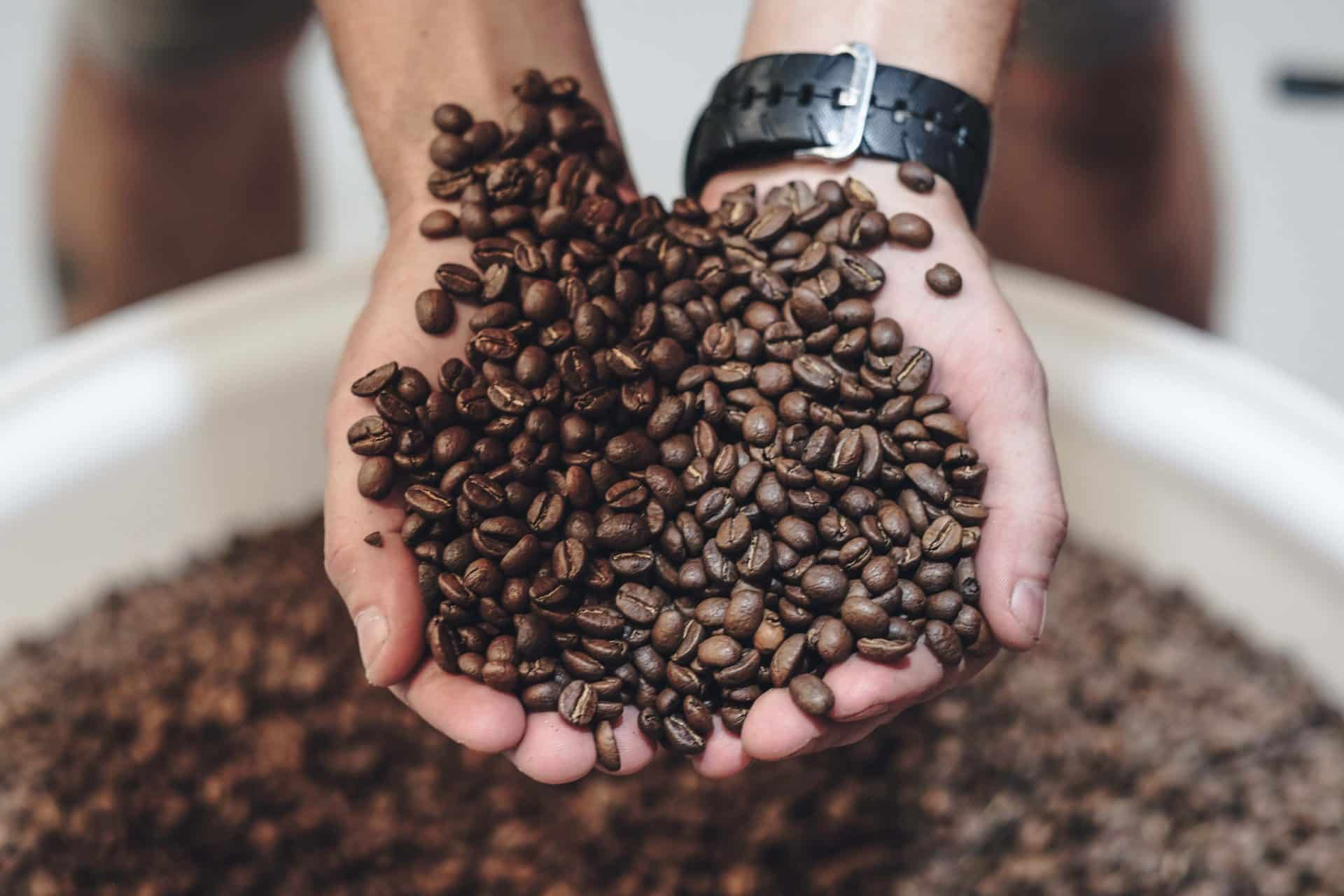 The Truth about resting Roasted Beans